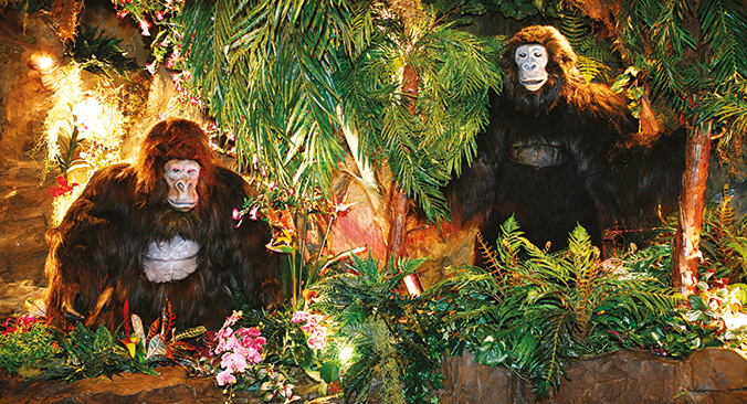 Rain Forest Cafe Tickets buchen