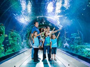 London Kurztrip Tickets Sea Life London Aquarium